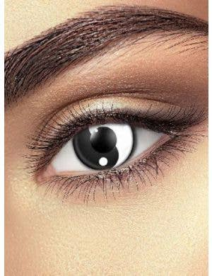 Ying and Yang 90 Day Wear Contact Lenses