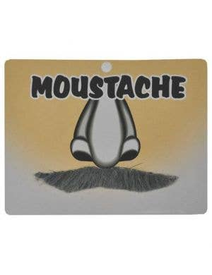 English Gentleman's Moustache Costume Accessory- Grey