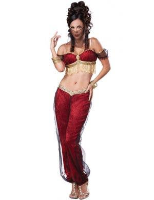 Dreamy Genie Sexy Women's Costume