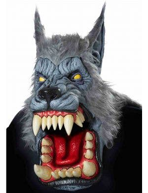 Full Head Deluxe Grey Latex Werewolf Mask with Attached Fur Main Image