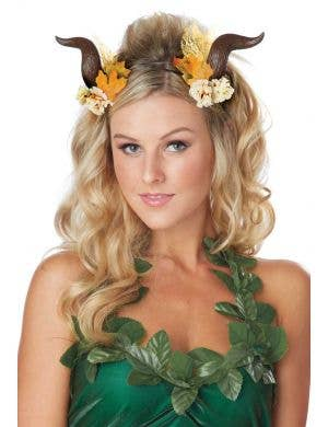 Women's Brown Woodland Fairy Costume Horns Main Image