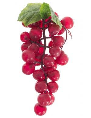 Bunch Of Fake Novelty Red Grapes Costume Accessory