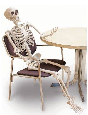 Posable 152cm Skeleton Halloween Decoration