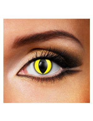 Cat's Eye Daily Disposable Contact Lenses by Funky Vision