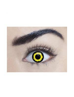 Wolf Yellow and Black 90 Day Wear Costume Contact Lenses
