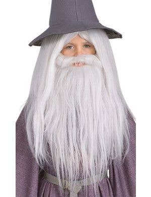 Gandalf Lord of the Rings Costume Wig and Beard