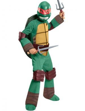 Boys Raphael Teenage Mutant Ninja Turtle Costume