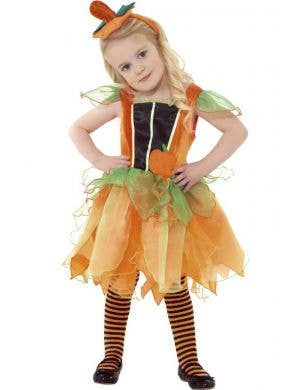 Toddler Girl's Pumpkin Fairy Costume Front View