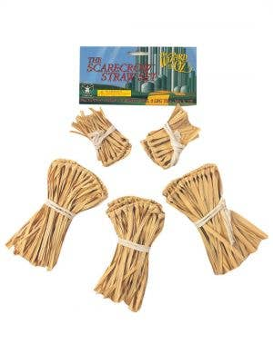 Wizard of Oz - Scarecrow Straw Set