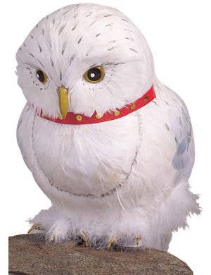 Harry Potter - Hedwig The Owl Costume Accessory Prop