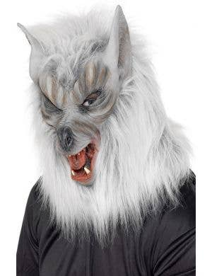 Grey Wolf Men's Latex Costume Mask Main Image