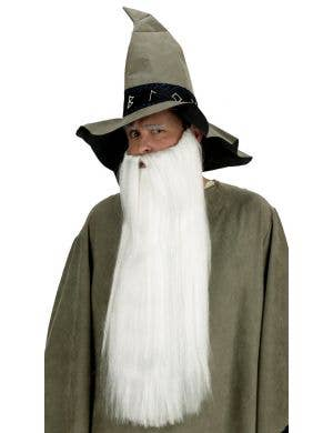 Long White Wizard Adult's Beard and Moustache Accessory