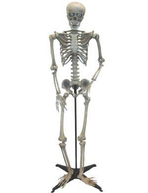Halloween Life Size Spooky Talking Skeleton Decoration