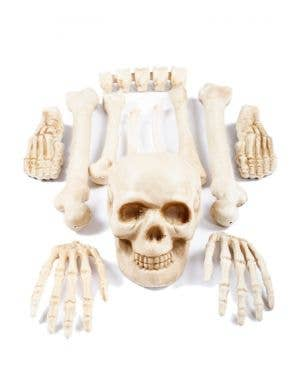 Bag of Bones Skeleton Halloween Decoration
