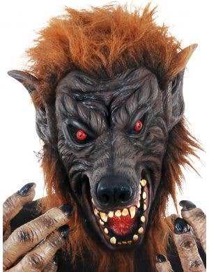 Creepy Brown Latex Werewolf Mask with Attached Fur
