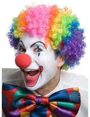 Adult's Rainbow Coloured Circus Clown Costume Wig