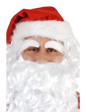 Bushy White Santa Claus Eyebrows Main Image