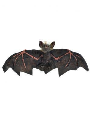 Hanging Black and Pink 30cm Vampire Bat Halloween Decoration
