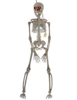 Light Up 50cm Hanging Skeleton Halloween Decoration