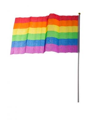 Rainbow Striped Flag Costume Accessory