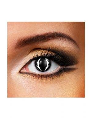Dragon Eye 90 Day Wear Black Contact Lenses