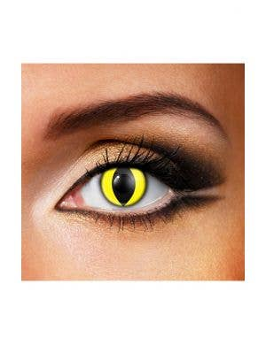 Crazy Yellow Cat Eyes 12 Month Halloween Contact Lenses