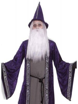 Deep Purple Velvet Merlin Wizard Men's Halloween Costume