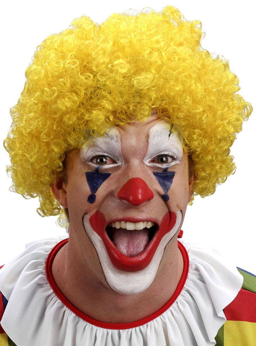 Adults Curly Afro Wig Multi Colour Party Clown Wigs Fancy Dress Accessory Black
