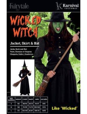 Wicked Witch Women's Halloween Costume
