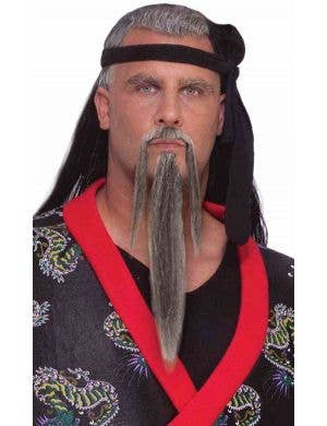Ancient Warrior Grey Beard and Moustache Costume Accessory