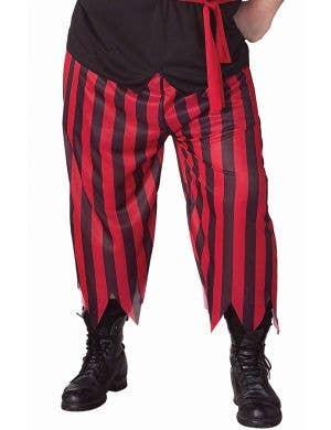 Buccaneer Pirate Plus Size Men's Costume
