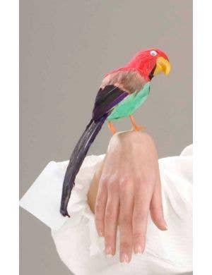 Feather Parrot Pirate Bracelet