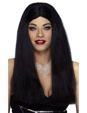 Classic Long Straight Black Women's Costume Wig