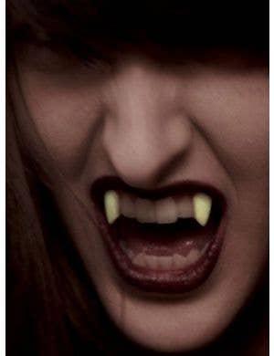 Small Deluxe Glow in the Dark Vampire Fangs