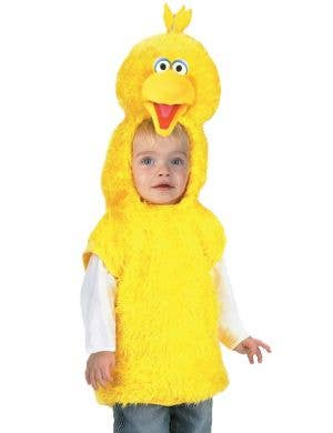 Sesame Street Boy's Big Bird Fancy Dress Costume Vest