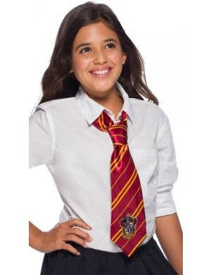 Harry Potter Gryffindor Tie Accessory