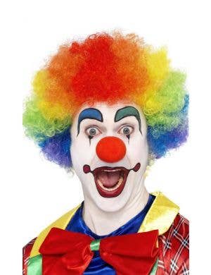 Crazy Clown Rainbow Afro Adult's Costume Wig