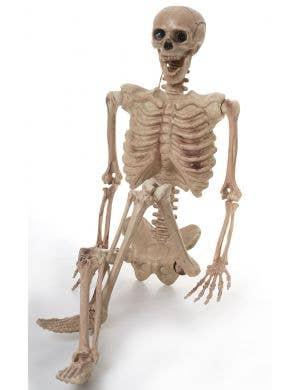 Life Size Hanging Skeleton Halloween Prop