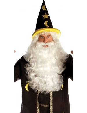 Potion Master Men's Plus Size Wizard Costume