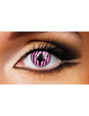 Zebra Pink 90 Day Wear Contact Lenses