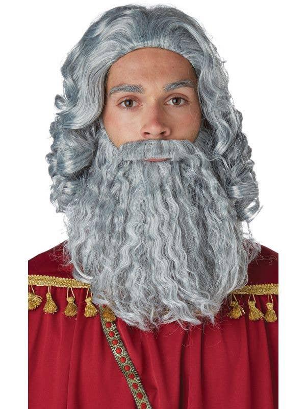 California Costumes Biblical King curly grey Wig Beard costume accessory set-Main Image