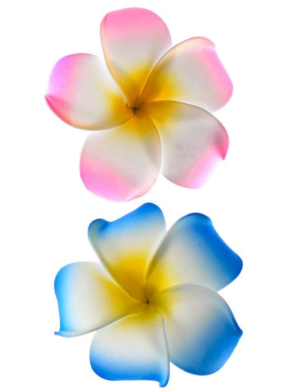 Pack of 2 Flower Frangipani Hair Clips in Pink and Blue Hawaiian Costume Accessory - Main Image