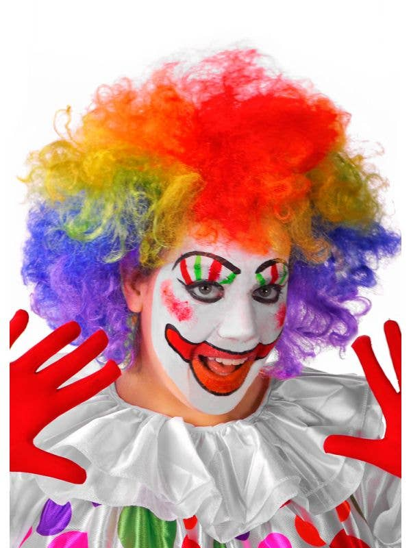 Adults Rainbow Afro Circus Clown Costume Wig