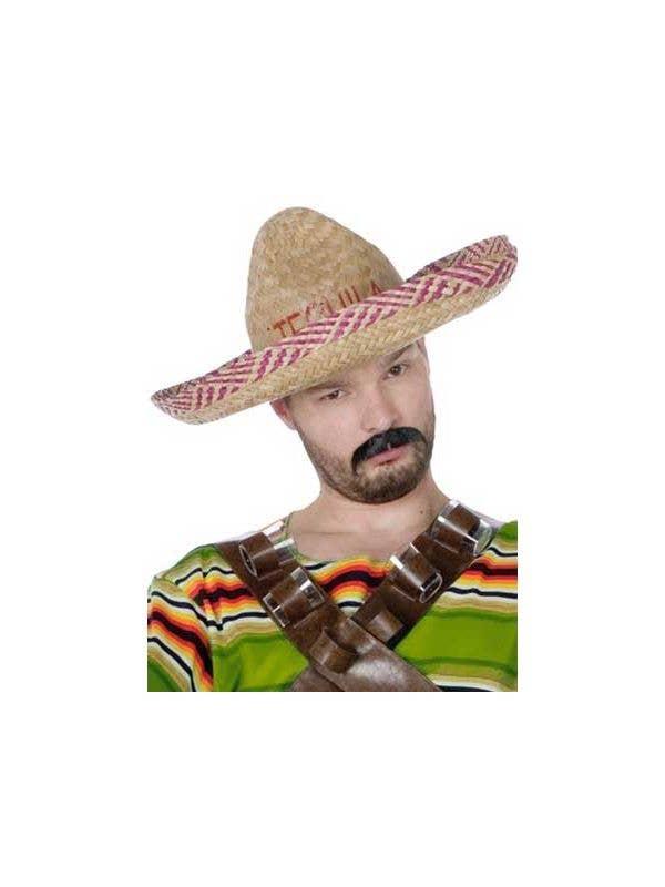 e84f479ddadc Mexican Tequila Dude Costume Sombrero Front View