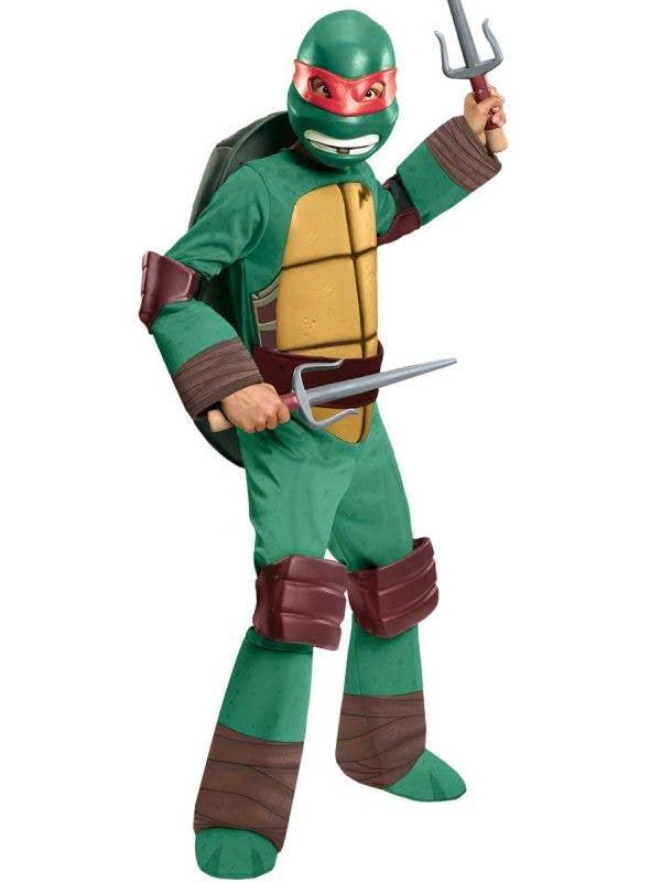 Boys Raphael Teenage Mutant Ninja Turtle Costume