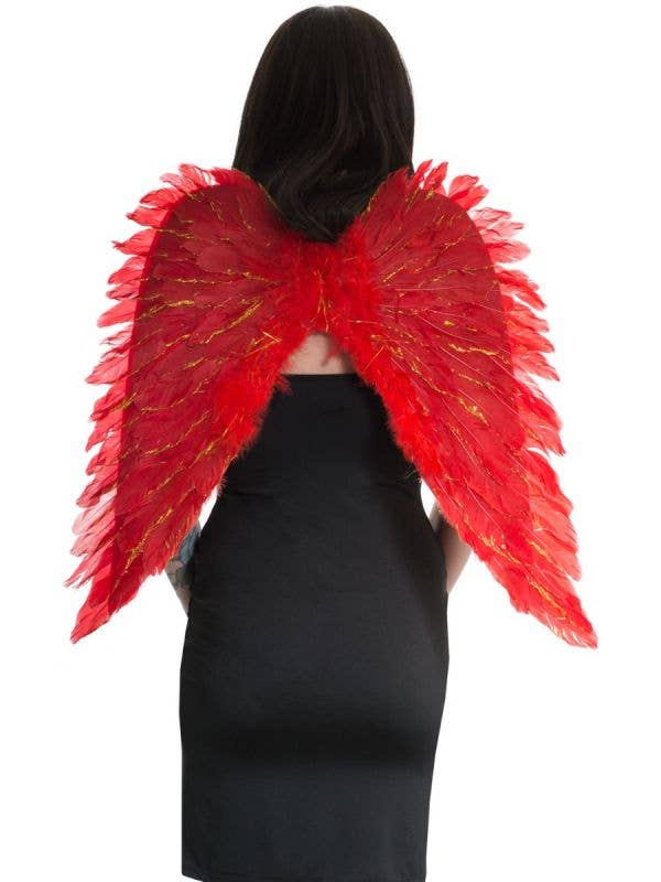 Red and Gold Feather Costume Accessory Wings Main Image
