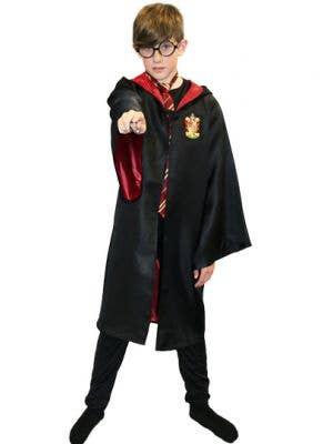 Gryffindor Boys Wizard School Costume Robes