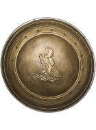 Officially Licensed Wonder Woman Shield Costume Accessory