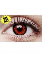 Volturi Red Vampire Single Wear Contact Lenses