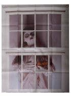 Scary Doll in the Window Halloween Window Decoration